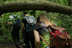 Neries Parke Litdea 2018-07-25 Lenda po medžiu